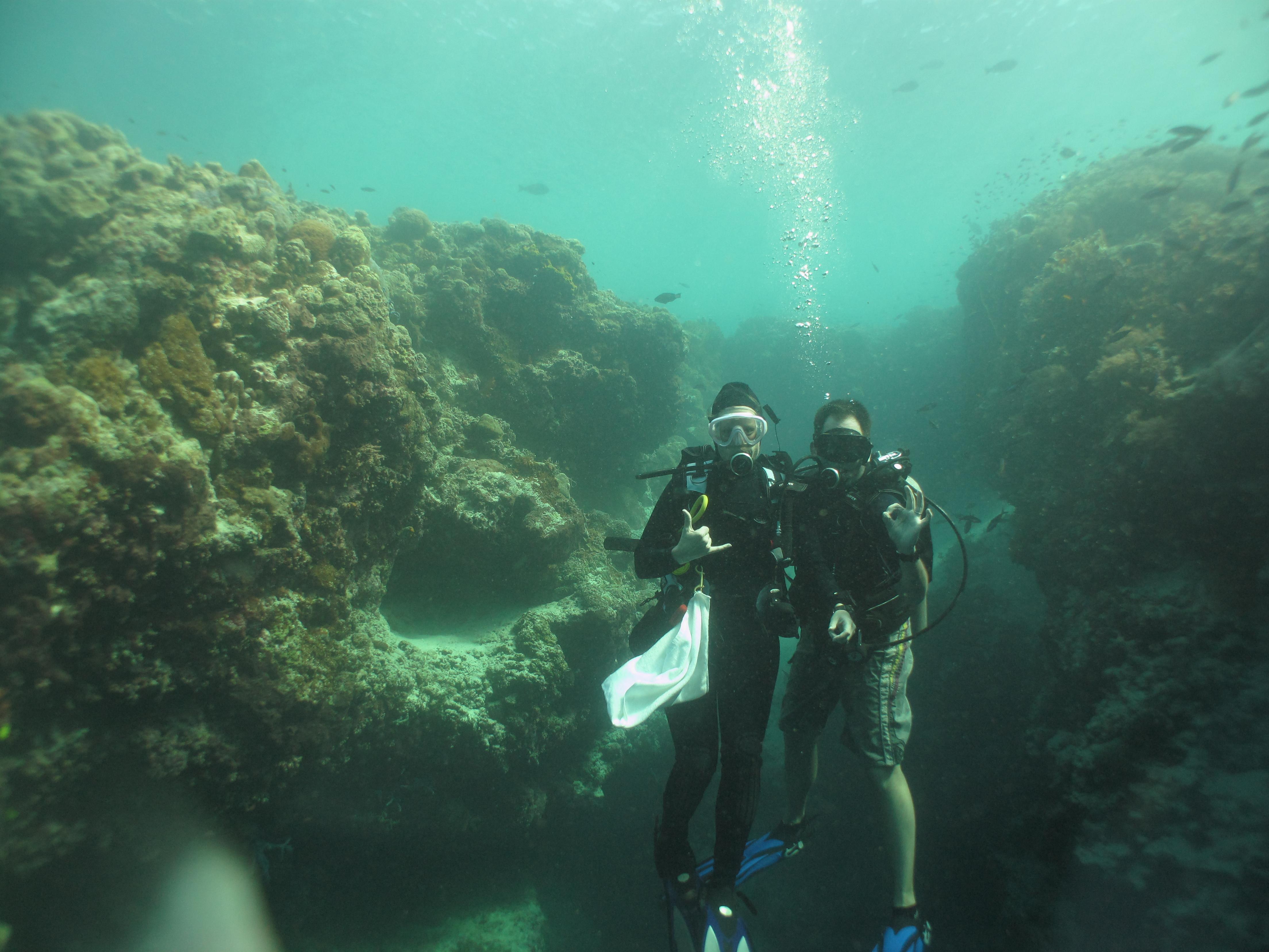 Sipadan scuba dive advisor - Sipadan dive sites ...