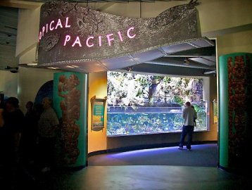 tropical-pacific-entrance_lrg_530_400_85shar-70-5-5_s_c1_c_c_0_0_1